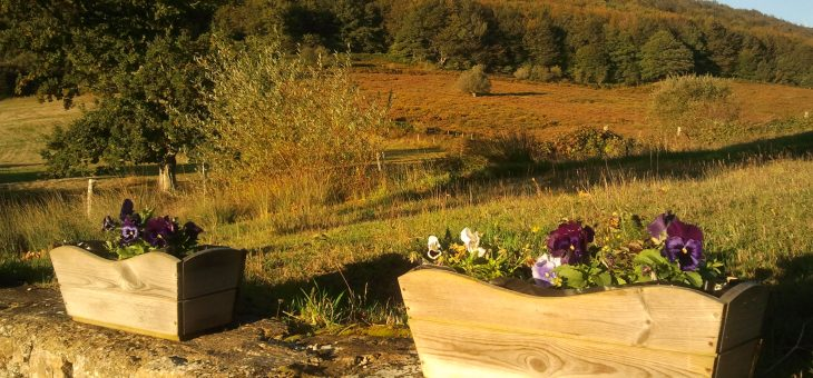 Amanecer en otoño junto al Hayedo de Carrales