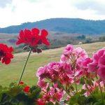 Vistas Casa rural La Toba