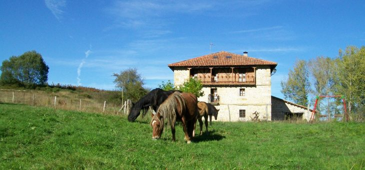 Get to know Cantabria. Rural tourism house 20 people.