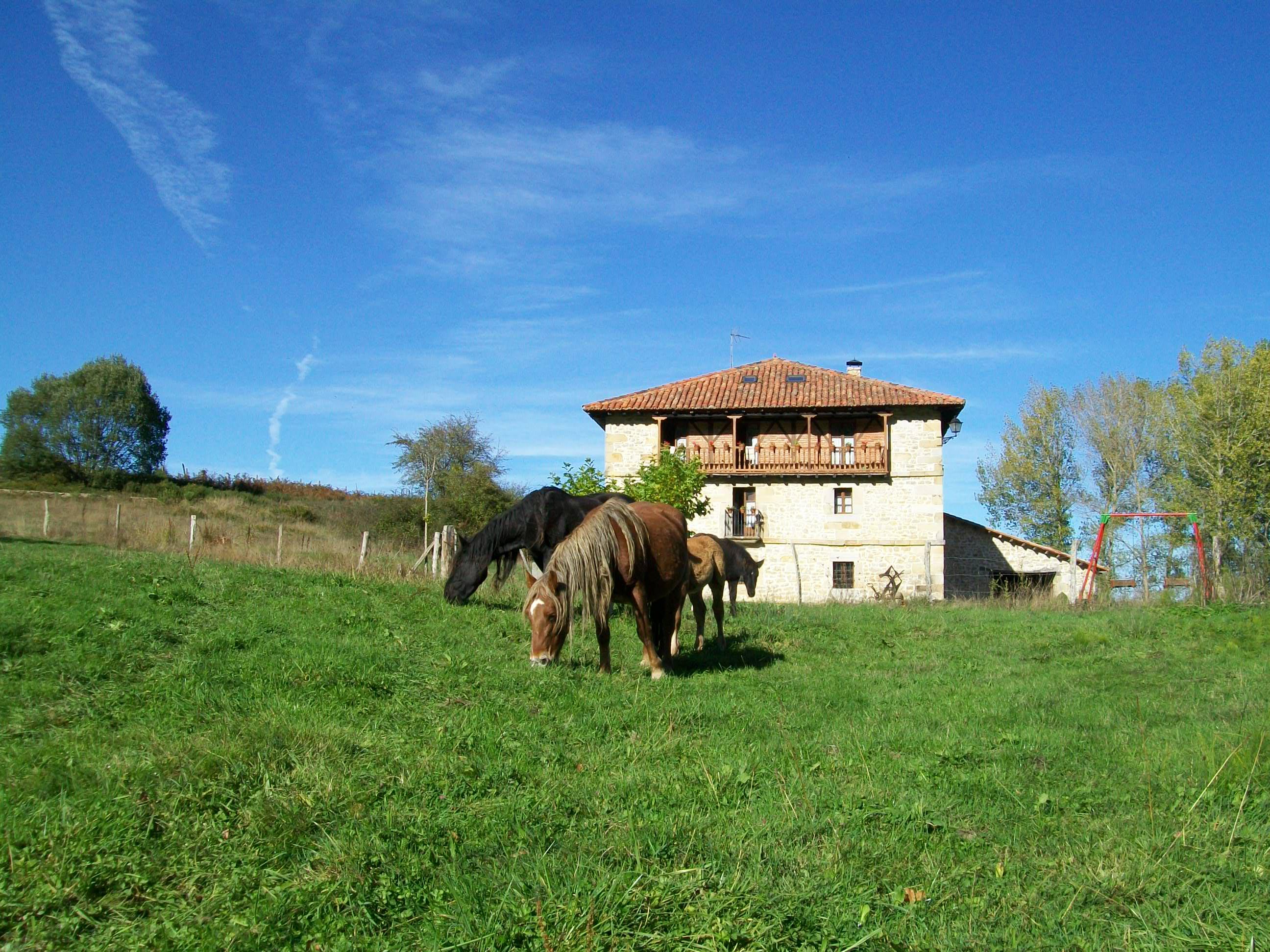 Casa rural la toba caballos casa rural la toba i y ii - Casa rural 30 personas ...