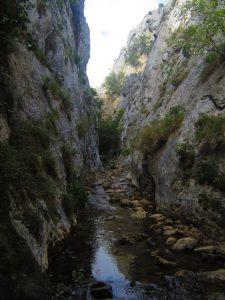 Las Palancas gorge