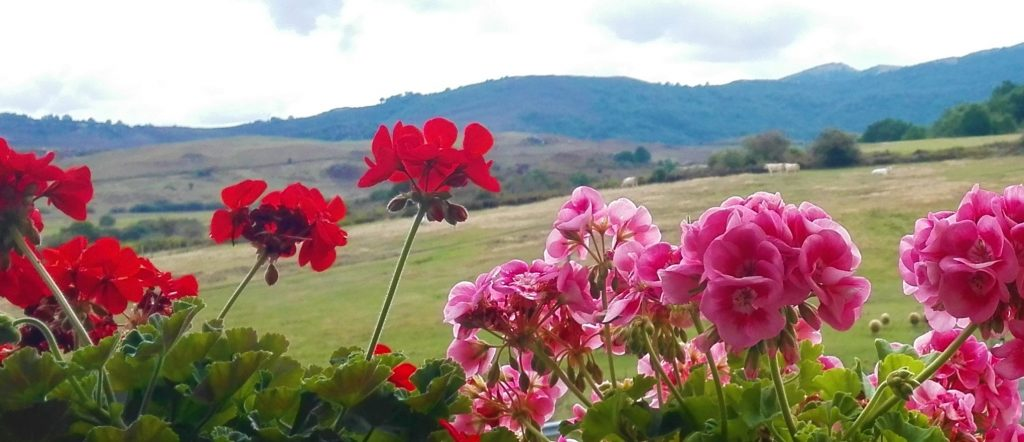 elegir casa rural para verano