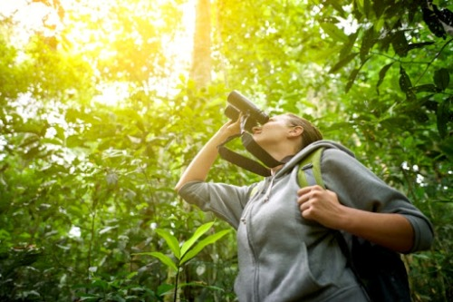 actividades casa rural La Toba avistamiento aves