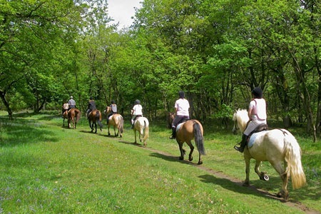 actividades casa rural la tobarutas a caballo